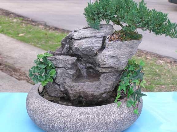 Live Bonsai Tabletop Fountain (Small) cd136
