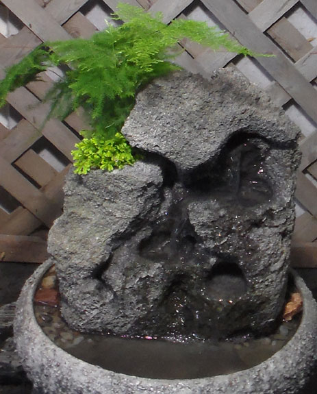 Small Indoor Fountain w/Live Plants RTG #25
