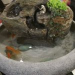 Indoor Fish Fountain (Live Plants) ss171