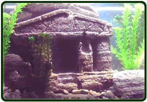 aquarium-decor