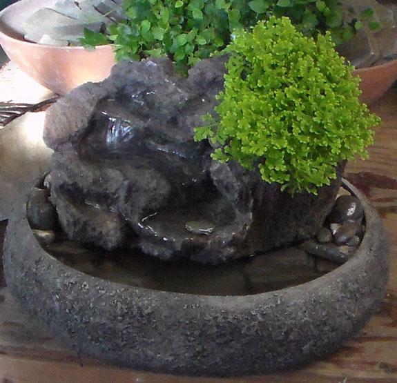 Medium Fountain w/ Live Plants #22