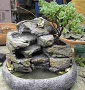 Live Bonsai Indoor Tabletop Fountain #cd72 - Natural Creations